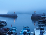 Misty fishing port